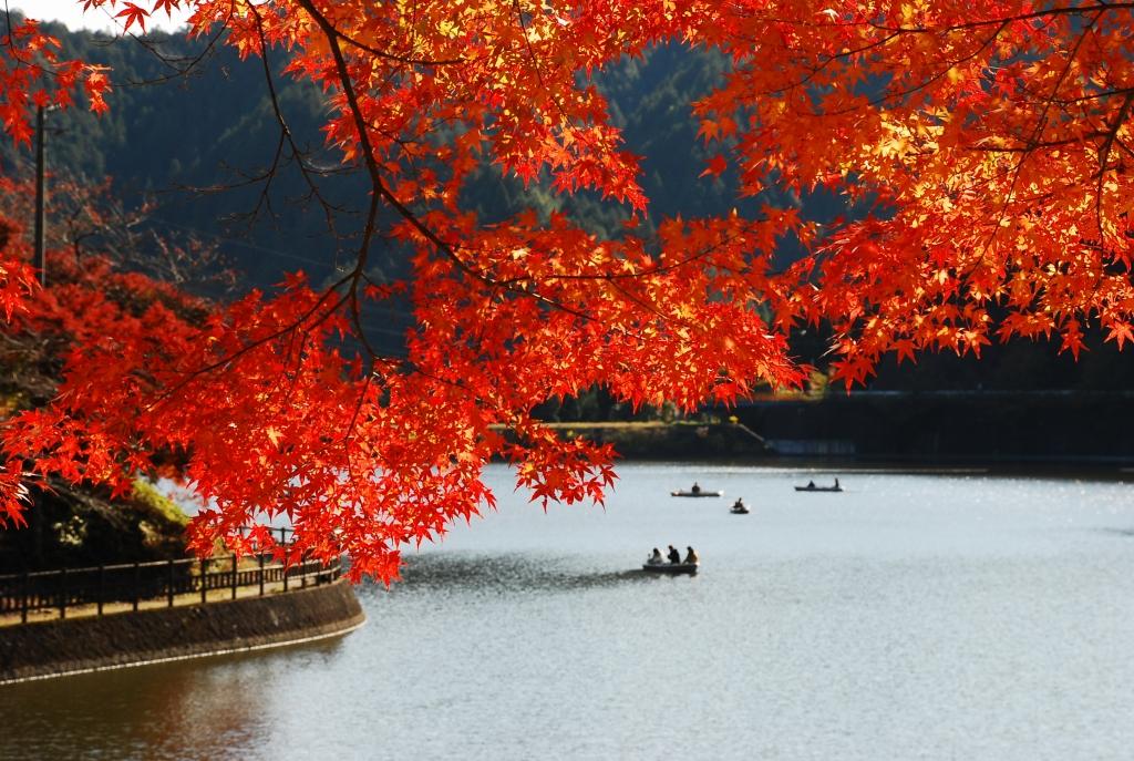 岐阜県 #伊自良湖