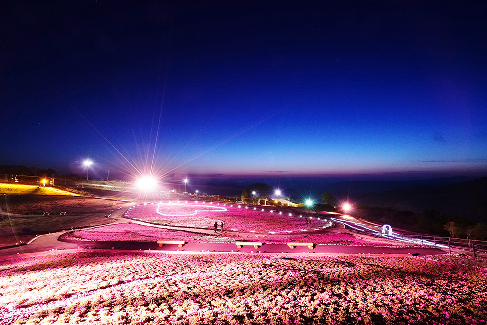 愛知県 #茶臼山高原